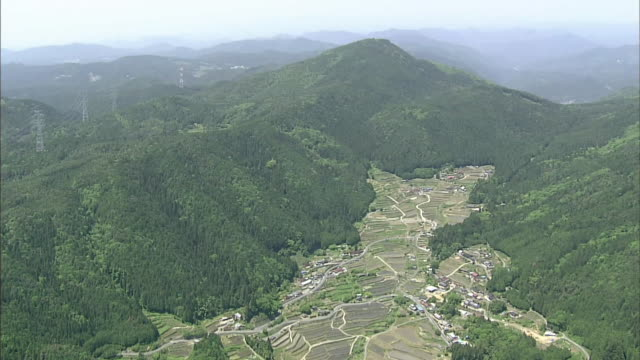 dense vegetation borders the sakaori rice terraces in gifu, japan. - 送電鉄塔点の映像素材/bロール