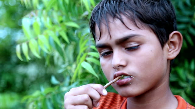 dental health using ayurveda - homeopathic medicine stock videos and b-roll footage