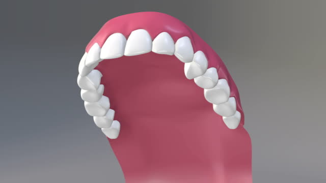 dental health - human teeth stock videos & royalty-free footage
