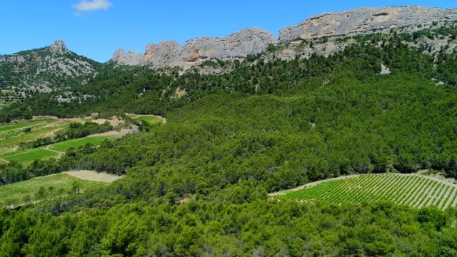 dentelles de montmirail vineyards, provence, france - provence alpes cote d'azur stock videos & royalty-free footage