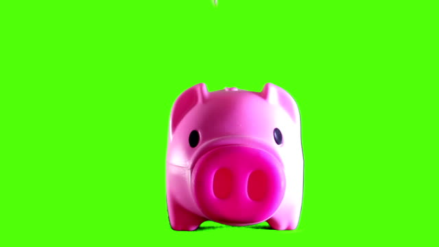 depoist your money - piggy bank stock videos & royalty-free footage