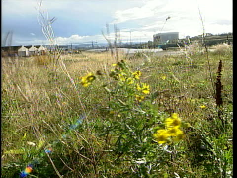 stockvideo's en b-roll-footage met second inquiry findings teeside haverton hill shipyard tgv derelict shipyard and river gv weeds growing on derelict site gv hangar approach road with... - derbyshire