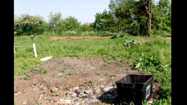 Derelict wasteground Leyla Laksari digging up wasteground