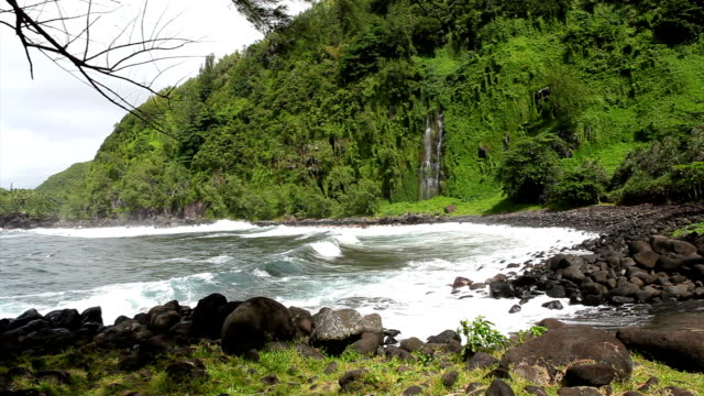 l'anse des cascades - french overseas territory stock videos and b-roll footage