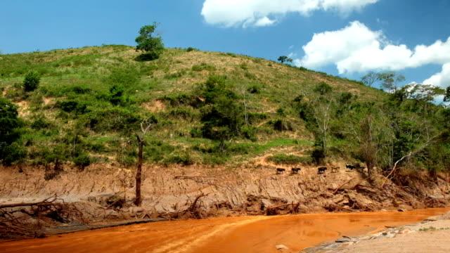 desastre ambiental em mariana, minas gerais. consequências do rompimento da barragem em bento rodrigues - mariana islands stock videos and b-roll footage