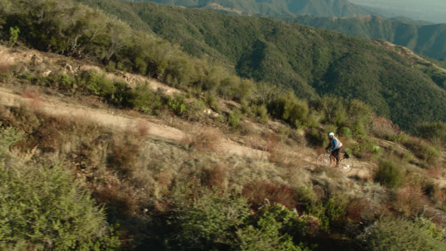 自転車に乗っている男の降下ドローンショットアップトレイル - 国有林点の映像素材/bロール