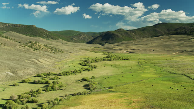 descending drone shot of ranch high in the rocky mountains - gunnison stock videos & royalty-free footage