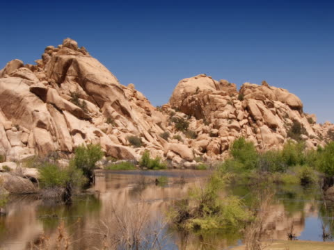desert bushes blow on the edge of a small lake in a rocky joshua tree enclave. - 熱帯の低木点の映像素材/bロール