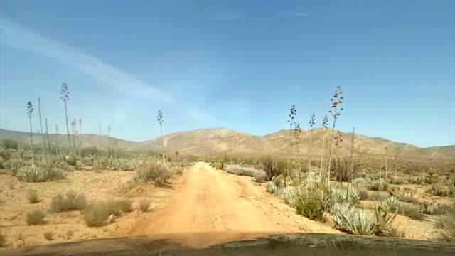 desert drive pov - quadbike stock videos & royalty-free footage