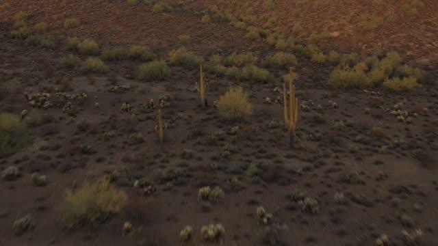 WS AERIAL Desert floor to reveal over ridge in Maricopa County / Arizona, United States