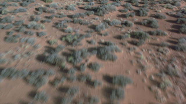 Desert ground covered with small green shrubs between tall rust colored rock formations.