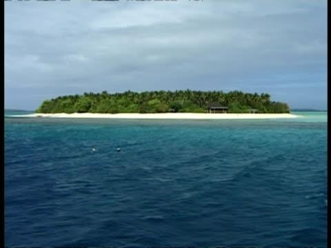 vídeos de stock, filmes e b-roll de desert island, from sea, tonga - oceano pacífico do sul