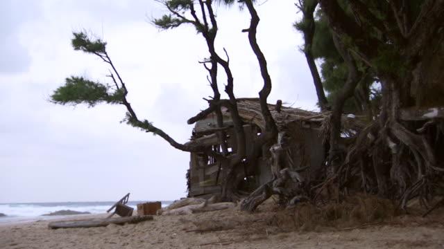 ms desert island shelter on wild beach on overcast morning / inhambane, mozambique - desert island stock videos & royalty-free footage