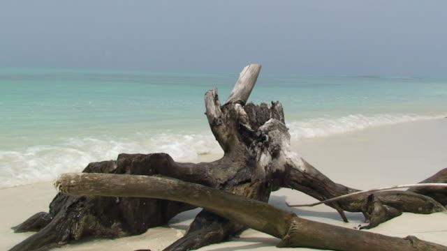 desert island - desert island stock videos & royalty-free footage