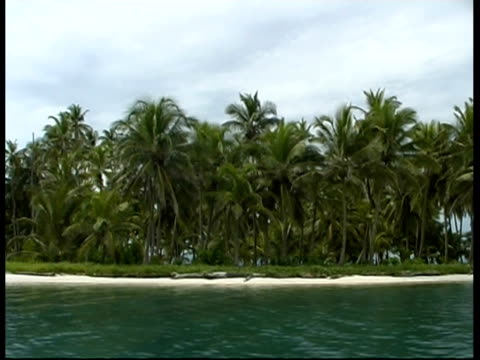 desert island with palm trees and huts, panama, central america - desert island stock videos & royalty-free footage