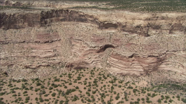 desert shrubs cover scrublands above the canyons of utah. available in hd - shrubland stock videos & royalty-free footage