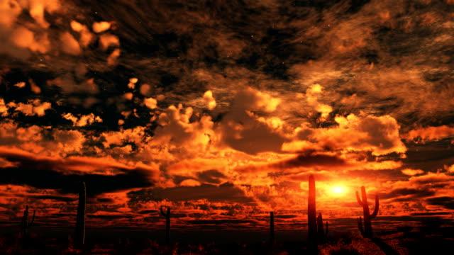 vidéos et rushes de coucher de soleil sur le désert - cactus