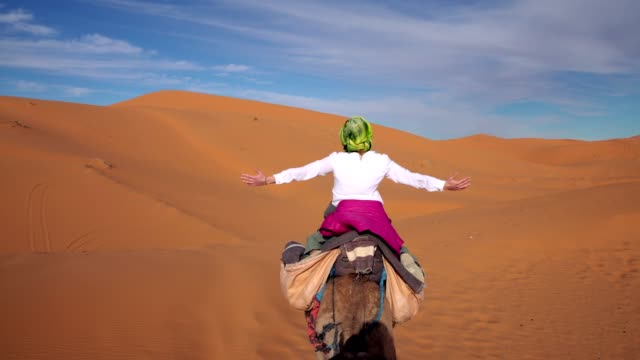 desert trip. woman enjoying ride on camel - camel stock videos & royalty-free footage