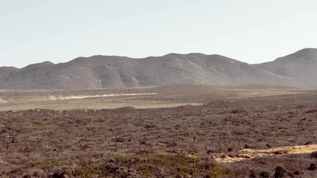 desert - baja california peninsula stock videos and b-roll footage