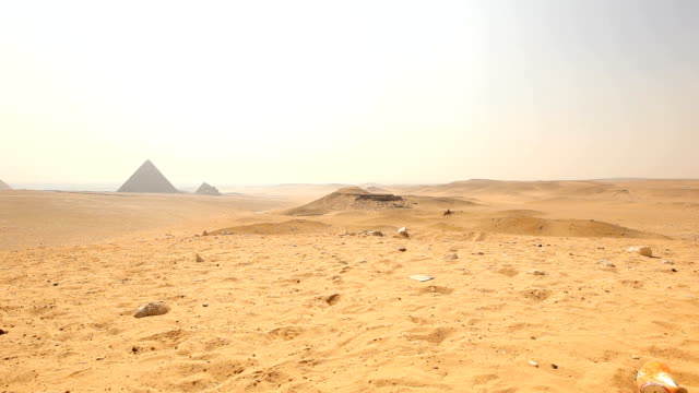 ES Desert with Giza pyramids and camel in the distance/ Cairo / Egypt