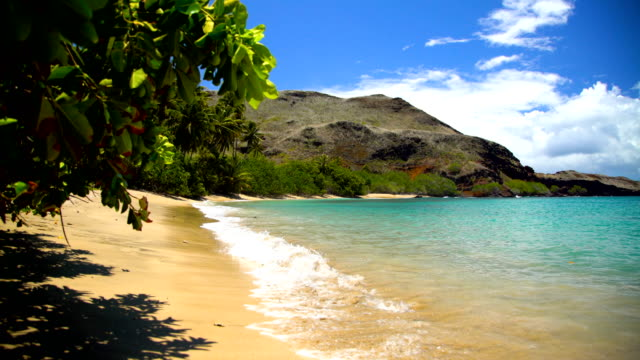 deserted ocean beach lush vegetation tahuata marquesas pacific - remote location bildbanksvideor och videomaterial från bakom kulisserna
