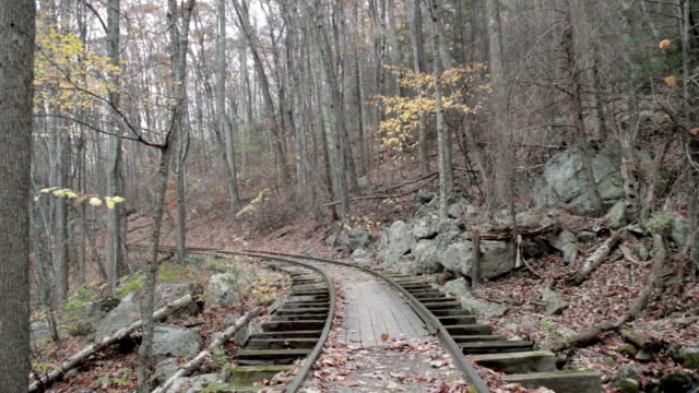 deserted railroad tracks in fall forrest - remote location stock videos & royalty-free footage