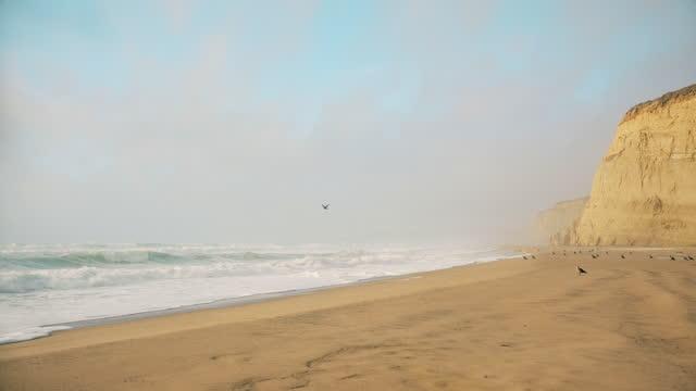 stockvideo's en b-roll-footage met verlaten wild strand door de oceaan. - zeegezicht