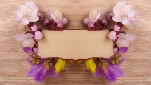 デザイン花材 - 四月点の映像素材/bロール
