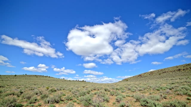 desolate under blue sky and puffy clouds in the desert with sagebrush south steens mountain near malheur national wildlife refuge 3 - oregon us state stock videos & royalty-free footage
