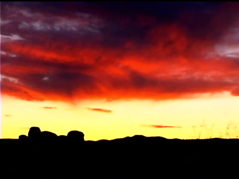 dessert in silhouette at sunset, joshua tree national park, california - 熱帯の低木点の映像素材/bロール