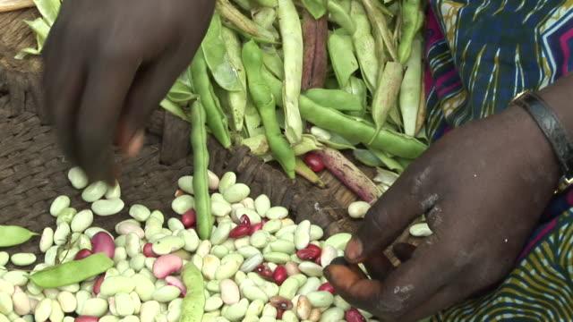 detail of a woman peeling green bean - green bean stock videos & royalty-free footage