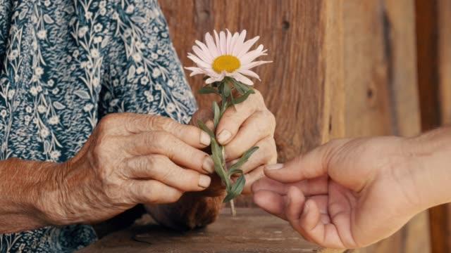 救いの手。年配の女性の手を繋いでいる若い女性の手の詳細 - 依存点の映像素材/bロール