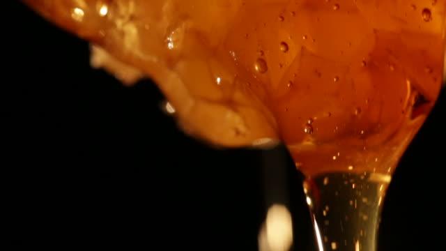 vídeos de stock, filmes e b-roll de detail of dripping honey - mel