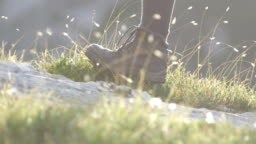 DOF: Detail of leather mountain shoes and woman stepping on meadow and bedrock