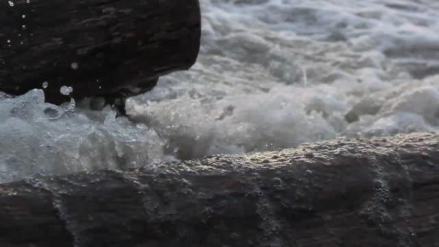 stockvideo's en b-roll-footage met detail of ocean lake waves crashing into driftwood. - model released - hd - drijfhout