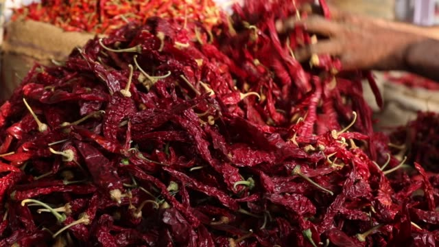 detail of red hot chillies at market - chilli pepper stock videos & royalty-free footage