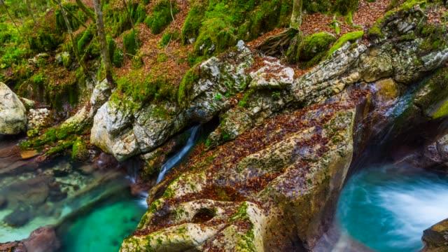 Detail of river in Triglav National Park