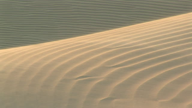 vidéos et rushes de ws detail of sand affected by the wind on the dunes / ilha dos lencois, maranhao, brazil - aride