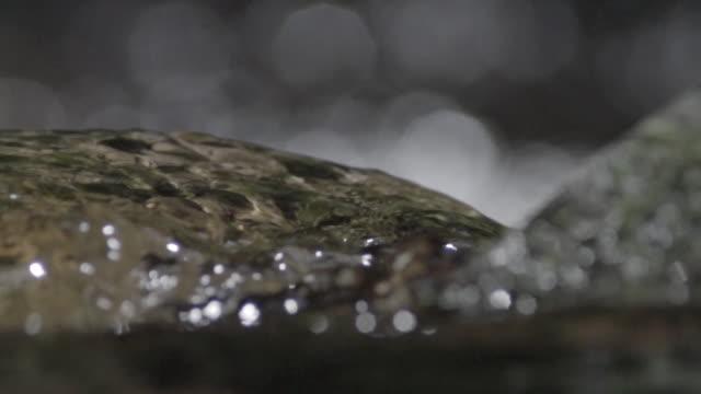 detail des stream-wassers in zeitlupe - bach stock-videos und b-roll-filmmaterial