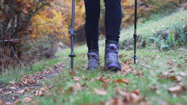 vídeos de stock e filmes b-roll de detail of the feet of a woman hiking in the forest - bota