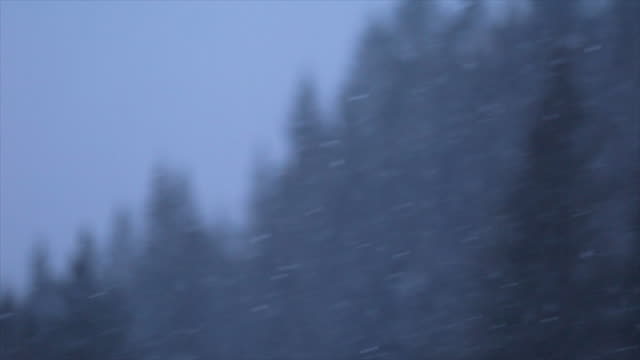 vídeos de stock, filmes e b-roll de detail of the snow falling snowing on a snow covered mountain. - sc47