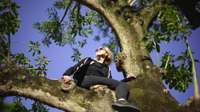 detail shot of a blonde woman sitting in a tree - in den dreißigern stock-videos und b-roll-filmmaterial