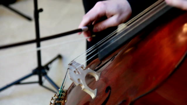 detail shot of hands playing cello - cellist stock videos & royalty-free footage