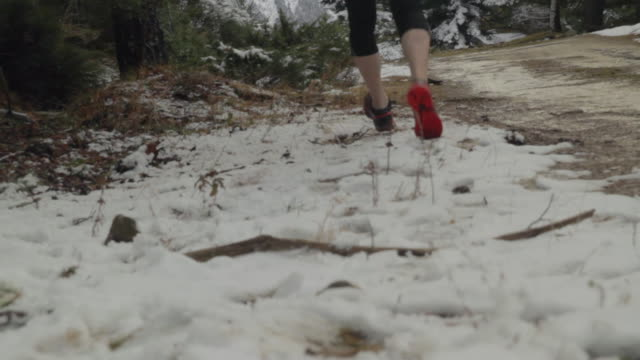 detail shot of trail running shoes  on a  snowy dirt road on a fresh pine forest - one mid adult man only stock videos & royalty-free footage