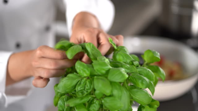 4k detail taking fresh green basil in kitchen - basil stock videos & royalty-free footage