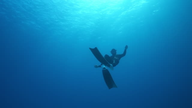 detail underwater shot of a scuba diver swimming in the ocean - scuba diving stock videos & royalty-free footage