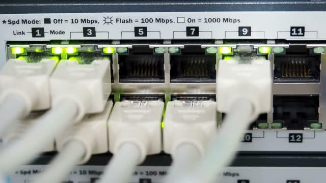 vídeos y material grabado en eventos de stock de detalles de cables utp, parpadear luces de led y rj 45 trabajando conmutadores ethernet - presentador de programa de concursos