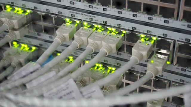 vídeos de stock, filmes e b-roll de detalhes de cabos utp, piscando luzes de led e rj 45 trabalho, comutadores de rede ethernet - fibra