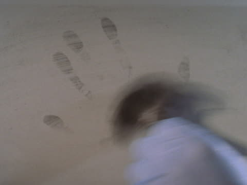 Detective lifting handprint from wall