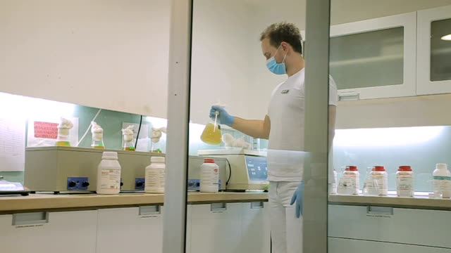 determination of food quality in the laboratory - antibiotic stock videos and b-roll footage